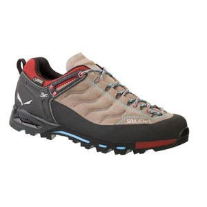 Buty WS MTN Trainer GTX